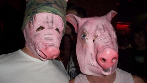 Schweinerei im Irrenhouse