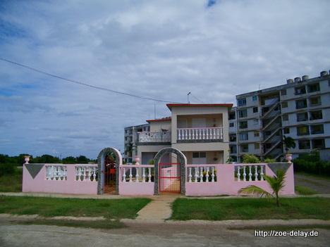 rosa vor plattenbauten